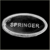 Springer Title Pin