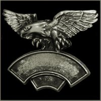 Double Line 3-D Hunting Eagle Event Pin