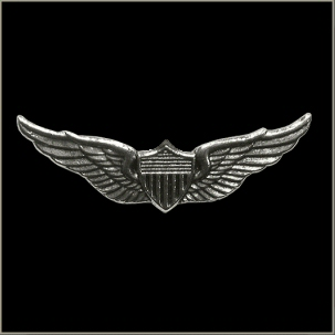 Aviator Wings Military Pin - Click Image to Close
